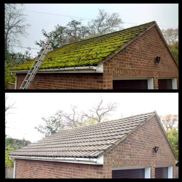 Moss Removal in woking