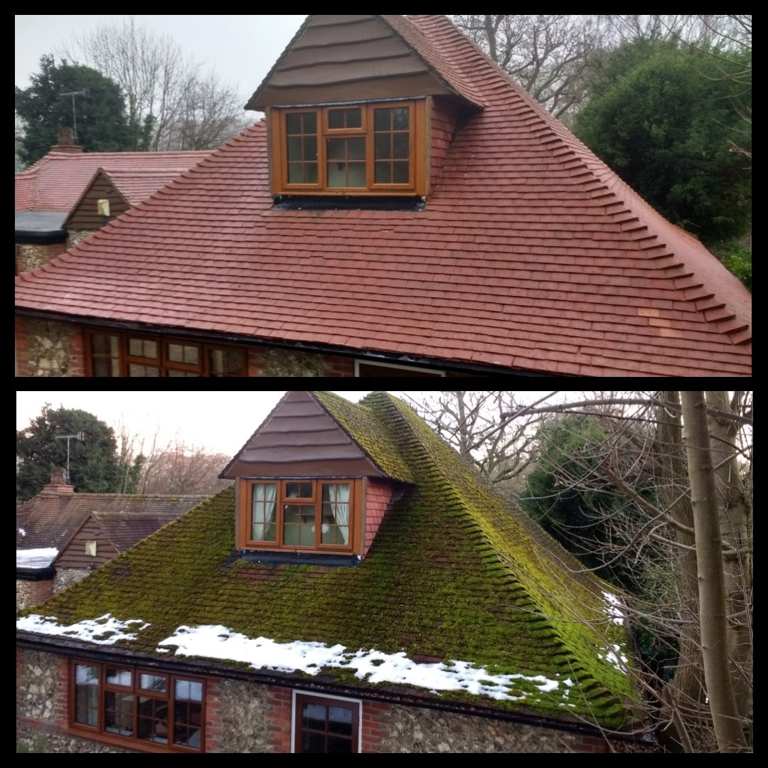 Roof Cleaning in Watford